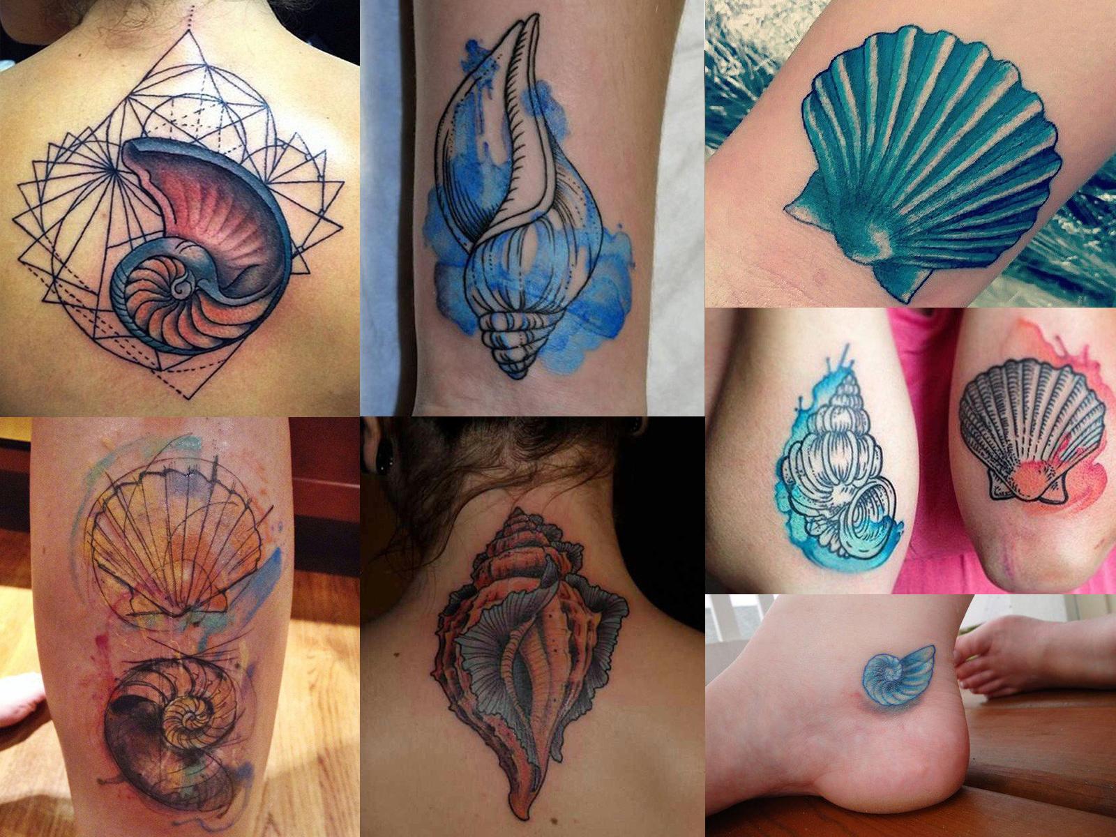 Tatuagens de conchas com técnicas de aquarela